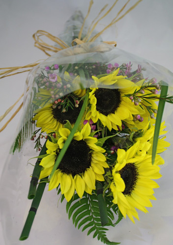 Buy The Bunch of Sunflowers
