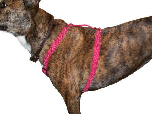 Glow Dog Reflective Fido Harness