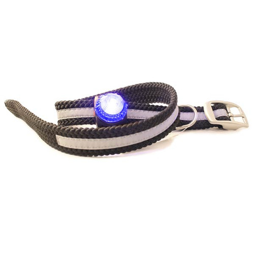 Shown with a Adventure Light - Guardian Light attached to the Collar.