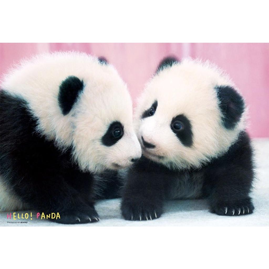Beverly Jigsaw Puzzle L74-164 Pretty Pet Series Hello! Panda (150 L-Pieces)