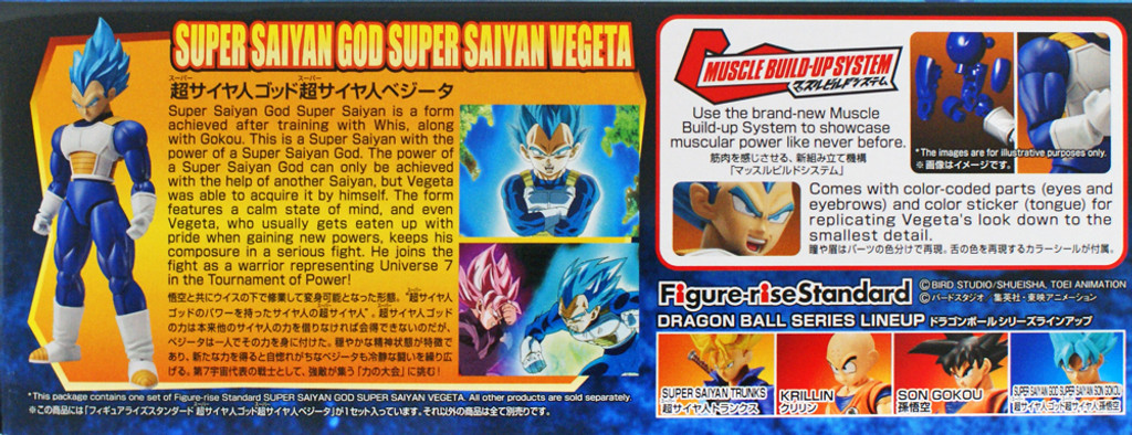 Bandai Figure-rise Dragon Ball Super Saiyan God Super Saiyan Vegeta Kit 197669 Toys & Hobbies Anime