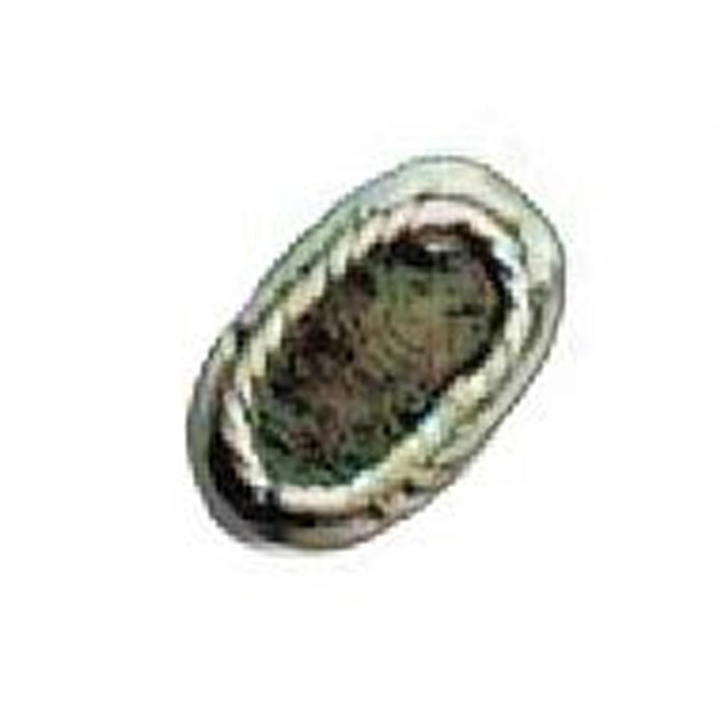 Azone AMP043-SSV Elliptical Belt Buckle Anodised Silver
