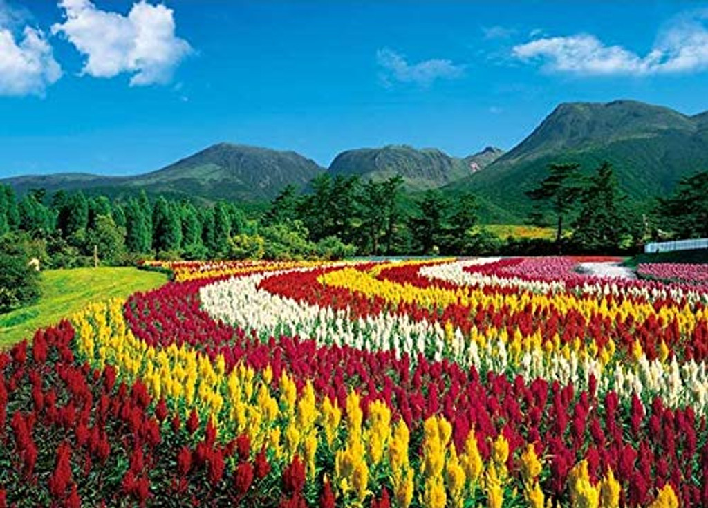 APPLEONE Jigsaw Puzzle 500-253 Celosia Argentea Mount Kuju Oita Japan (500 Pieces)