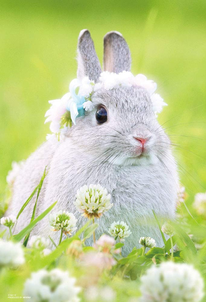 Beverly Jigsaw Puzzle P33-175 Rabbit and Flower (300 Pieces)