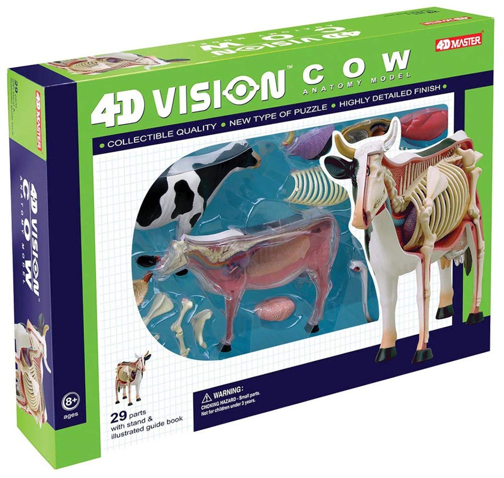 Aoshima 4D Vision No.3 Cow Anatomy Model Non-scale Kit