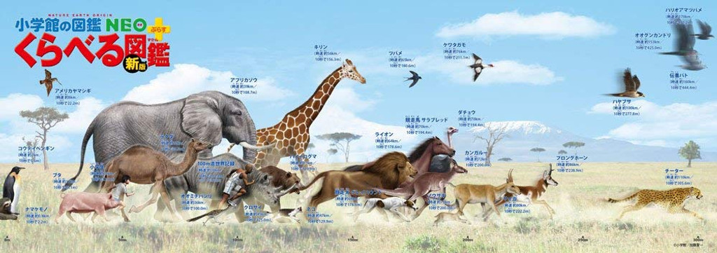 Beverly Jigsaw Puzzle 33-129 The Animal Book (Speed Comparison in Running and Flying)  (352 Pieces)