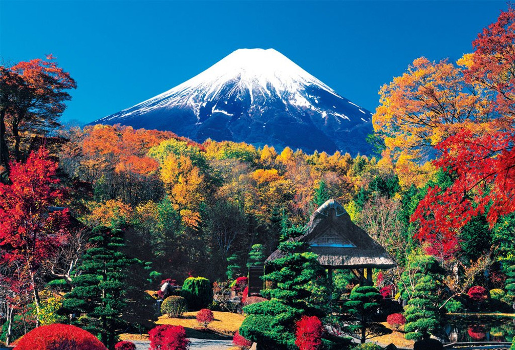 Beverly Jigsaw Puzzle 51-224 World Heritage Oshino Fuji in Autumn Color (1000 Pieces)