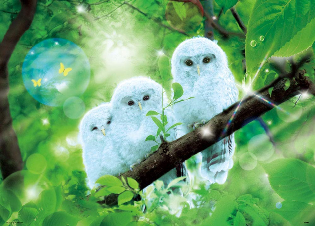 Beverly Jigsaw Puzzle 66-116 Wilfar White Owl of Happiness (600 Pieces)