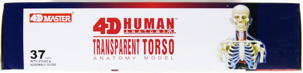 Aoshima 107157 4D Vision No.14 Transparent Torso Model Non-scale Kit