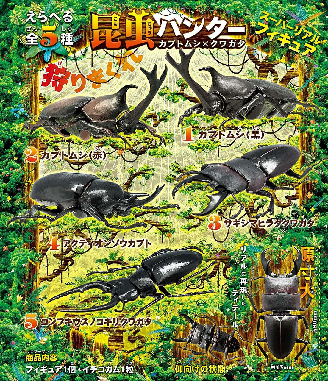 F-toys Insect Hunter Japanese Stag /& Rhinoceros Beetle Collection 5 Pcs Set