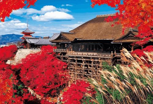 Beverly Jigsaw Puzzle 51-208 Japanese Scenery Kiyomizu Temple Kyoto(1000 Pieces)