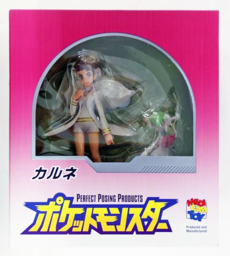 Medicom PPP Diantha (Carnet) Pocket Monster Figure non-Scale 4530956510088