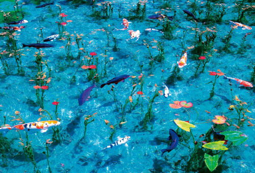 Beverly Jigsaw Puzzle 51-241 Monet's Pond Japan (1000 Pieces)