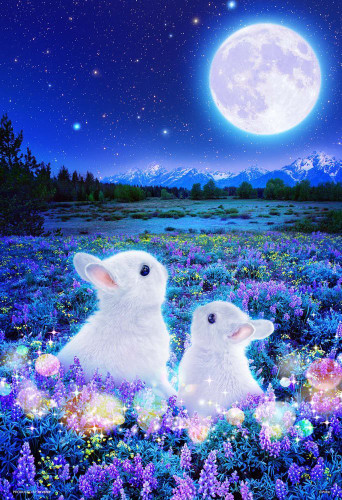 Beverly Jigsaw Puzzle M81-559 Wilfar Rabbits Waiting for the Moon (1000 S-Pieces)