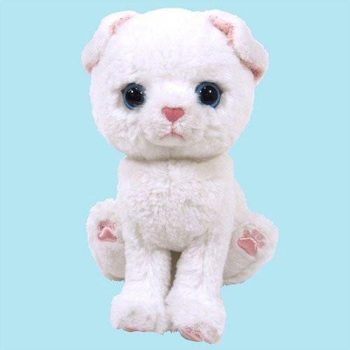 Sun Lemon Plush Doll Kitten Chiton Stuffed Scottish Fold White TJN