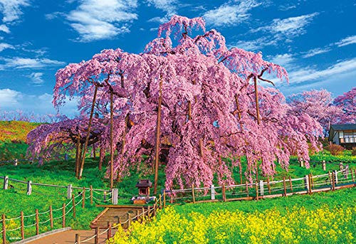 Beverly Jigsaw Puzzle 33-165 Japan Miharu Takizakura in Full Bloom (300 Pieces)