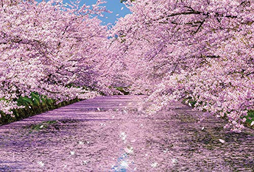 Beverly Jigsaw Puzzle 51-251 Japan Cherry Blossoms at Hirosaki Park (1000 Pieces)