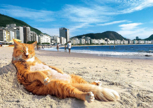Epoch Jigsaw Puzzle 03-052 Mitsuaki Iwago's Cat Puzzle King of the Beach (108 Pieces)