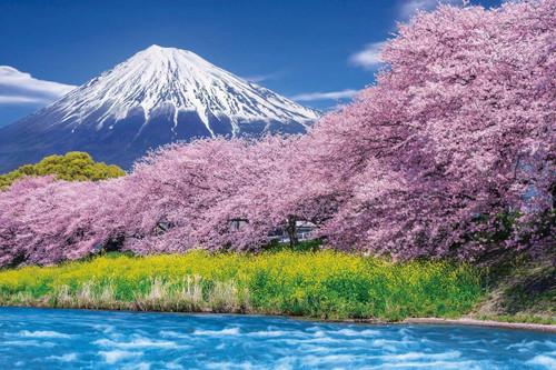 Epoch Jigsaw Puzzle 10-804 Urui River Ryugambuchi, Mount Fuji, Shizuoka, Japan (1000 Pieces)