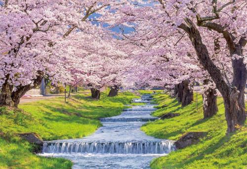 Epoch Jigsaw Puzzle 25-177 Cherry Blossom, Kannonjigawa, Fukushima (300 Pieces)