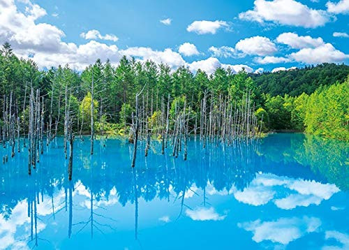 APPLEONE Jigsaw 500-263 Biei Shirogane Blue Pond (500 Pieces)