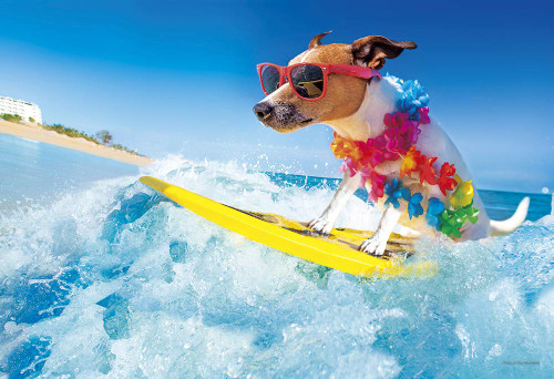 Yanoman Jigsaw Puzzle 03-897 Surfing Dog (300 Pieces)