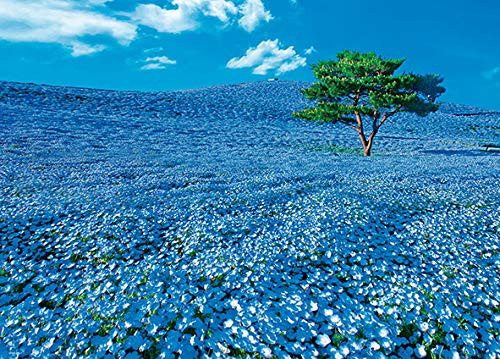 Beverly Jigsaw Puzzle 66-123 Japanese Scenery Hill of Nemophila (600 Pieces)