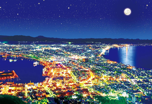 Apollo-sha Jigsaw Puzzle 48-813 Japanese Scenery Hakodate Japan (300 Pieces)