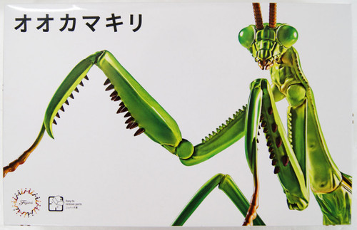 Fujimi 170824 Living Thing Series No.23 Tenodera Aridifolia (Japanese Giant Mantis)