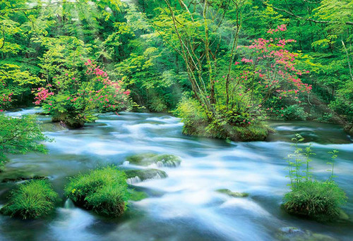Apollo-sha Jigsaw Puzzle 48-645 Japanese Scenery Azalea and River (300 Pieces)