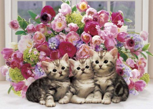 Epoch Jigsaw Puzzle 05-082 Floral Kitties (500 Pieces)