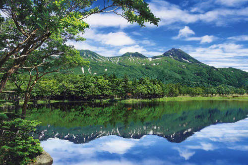 Epoch Jigsaw Puzzle 11-487 Japanese Scenery Shiretoko Hokkaido (1000 Pieces)