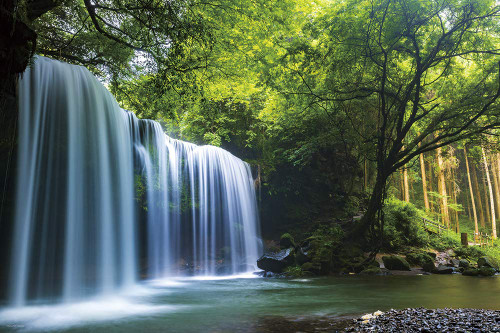 Yanoman Jigsaw Puzzle 10-1349 Nabegataki Falls Kumamoto Japan (1000 Pieces)