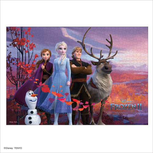 Tenyo Japan Jigsaw Puzzle D1000-056 Disney Frozen 2 Anna Secret Story (1000 Pieces)