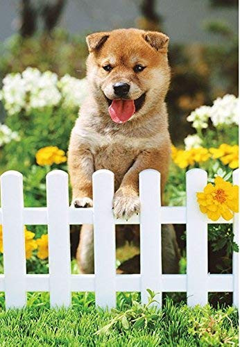 APPLEONE Jigsaw Puzzle 88-105 Play with Me Shiba Dog (88 L-Pieces)