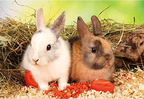 APPLEONE Jigsaw Puzzle 88-107 We are Vegetarian Bunnies (88 L-Pieces)