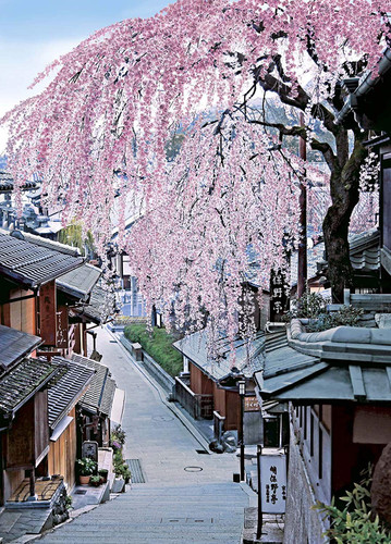 Epoch Jigsaw Puzzle 05-098 Japan landscape Sakura in Bloom Sannei-zaka Kyoto (500 Pieces)