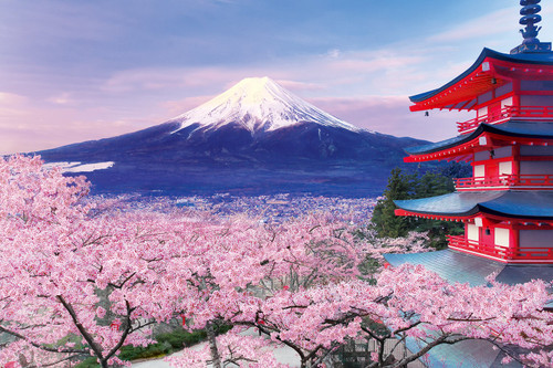 Epoch Jigsaw Puzzle 10-787 Cherry Blossom and Gojunoto in Yamanashi (1000 Pieces)
