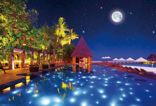 Beverly Jigsaw Puzzle 31-425 Starlight (Maldives) (1000 Pieces)