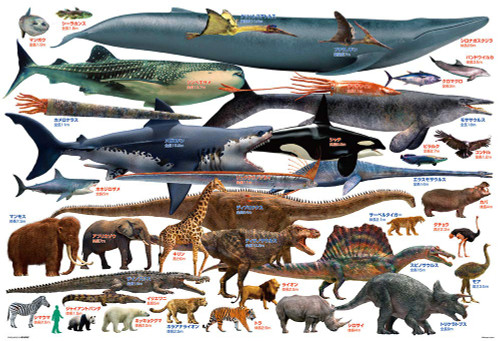 Beverly Jigsaw Puzzle 61-441 The Animal Book (Size Comparison of Large Creature) (1000 Pieces)
