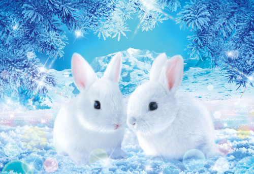 Beverly Jigsaw Puzzle M81-538 Wilfar Rabbits Waiting for Spring (1000 S-Pieces)