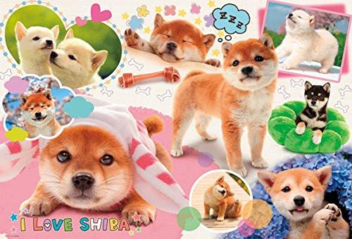 Beverly Jigsaw Puzzle P61-424 I LOVE SHIBA (1000 Pieces)