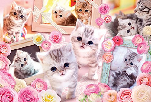 Beverly Jigsaw Puzzle P61-425 Cute Cats (1000 Pieces)
