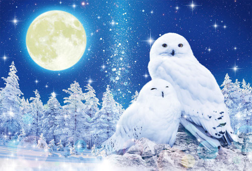 Beverly Jigsaw Puzzle 91-129 Glows in the Dark Wilfar Lucky White Owl (1000 Pieces)