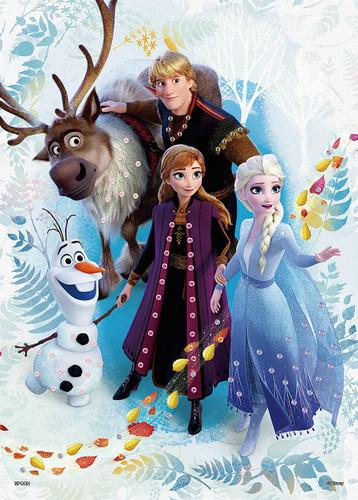 Epoch Jigsaw Puzzle Decoration 74-012 Disney Frozen Journey Frozen 2 (500 Pieces)
