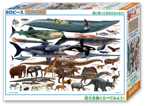 Beverly Jigsaw Puzzle 80-028 Comparing Big Animals (80 L-Pieces)
