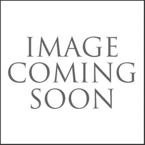 Ebbro 45119 HP SF14 Super Formula 2014 No.10 Black & White 1/43 Scale