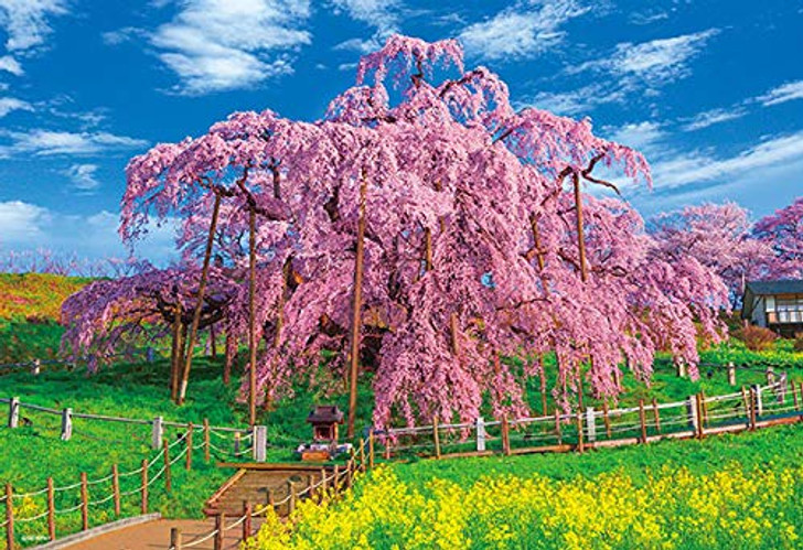 Beverly Jigsaw Puzzle 33-165 Japan Miharu Takizakura in Full Bloom (300 Pieces)