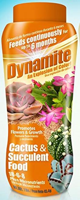 Dynamite Sun Bulb Cactus and Succulent Food