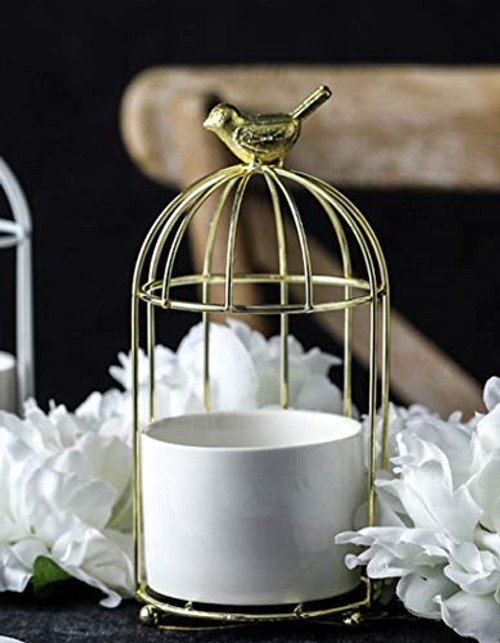 Metal Bird Cage Flower Stand and Pot, for Succulents, Cactus and Small Plants - Gold Cage